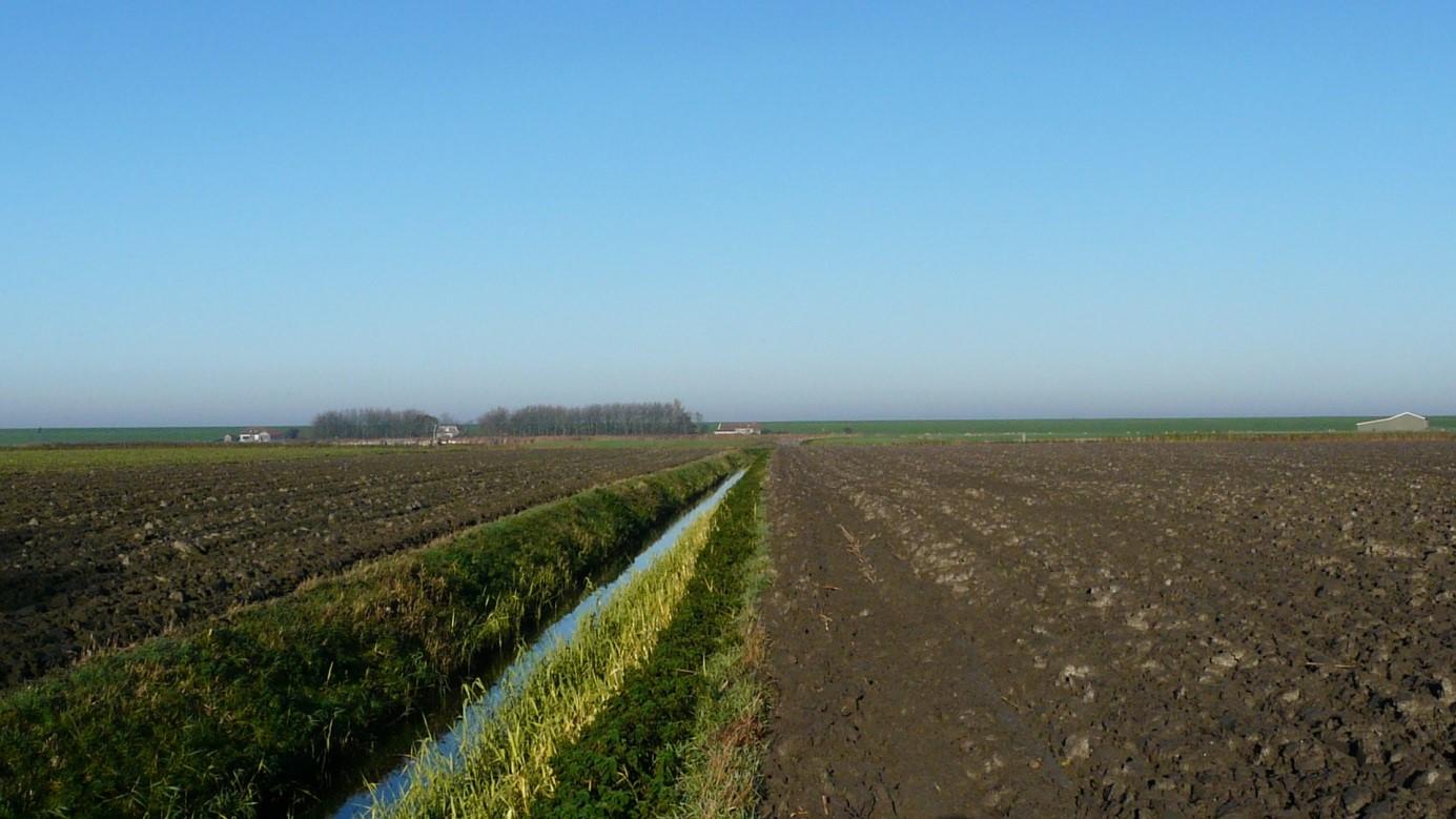 Verhaal Firdgum - Terpen- en Wierdenland