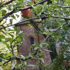 achterzijde-pancratiuskerk