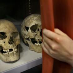 2015-07-23 09_04_44-Twee schedels op bouwplek Van der Valk - fryslân - LC.nl