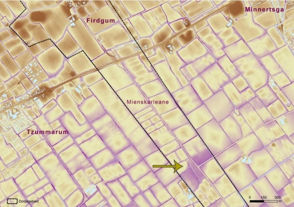 De pijl geeft de ligging aan van een geulrestant in de Firdgumer Mieden. Het laaggelegen perceel tussen de Mienskarleane en de dorpsgrens is tijdens de ruilverkaveling ingeplant met bomen. Verder is goed te zien dat het miedengebied ten zuiden van de kwelderwal met daarop de Firdgumer terpen een stuk lager is.