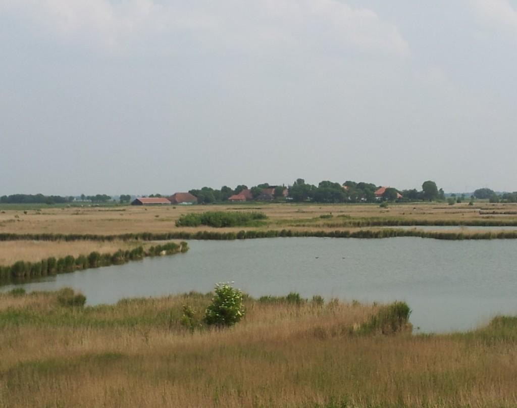 Op deze foto die is genomen langs de Duitse waddenkust bij Pilsum is aan de horizon een terpdorp te zien, met op de voorgrond een drassig landschap met water en riet. Mogelijk zag de laagte ten noorden van Wijnaldum er ook ongeveer zo uit voordat men het gebied heeft ingepolderd.