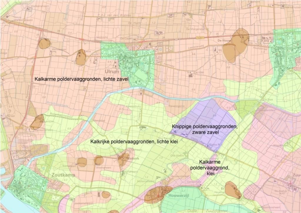 Uitsnede van de bodemkaart, met daarop het onderscheid tussen kalkarme en kalkrijke bodems.