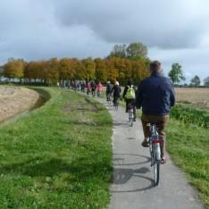 wierdenland-landschap-800x533-2