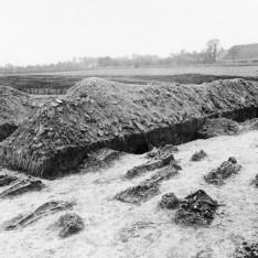 Het grafveld van Godlinze in de tijd van de opgraving door Van Giffen (1919).